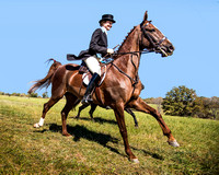 Bridlespur Hunt Club Opening Season Ride